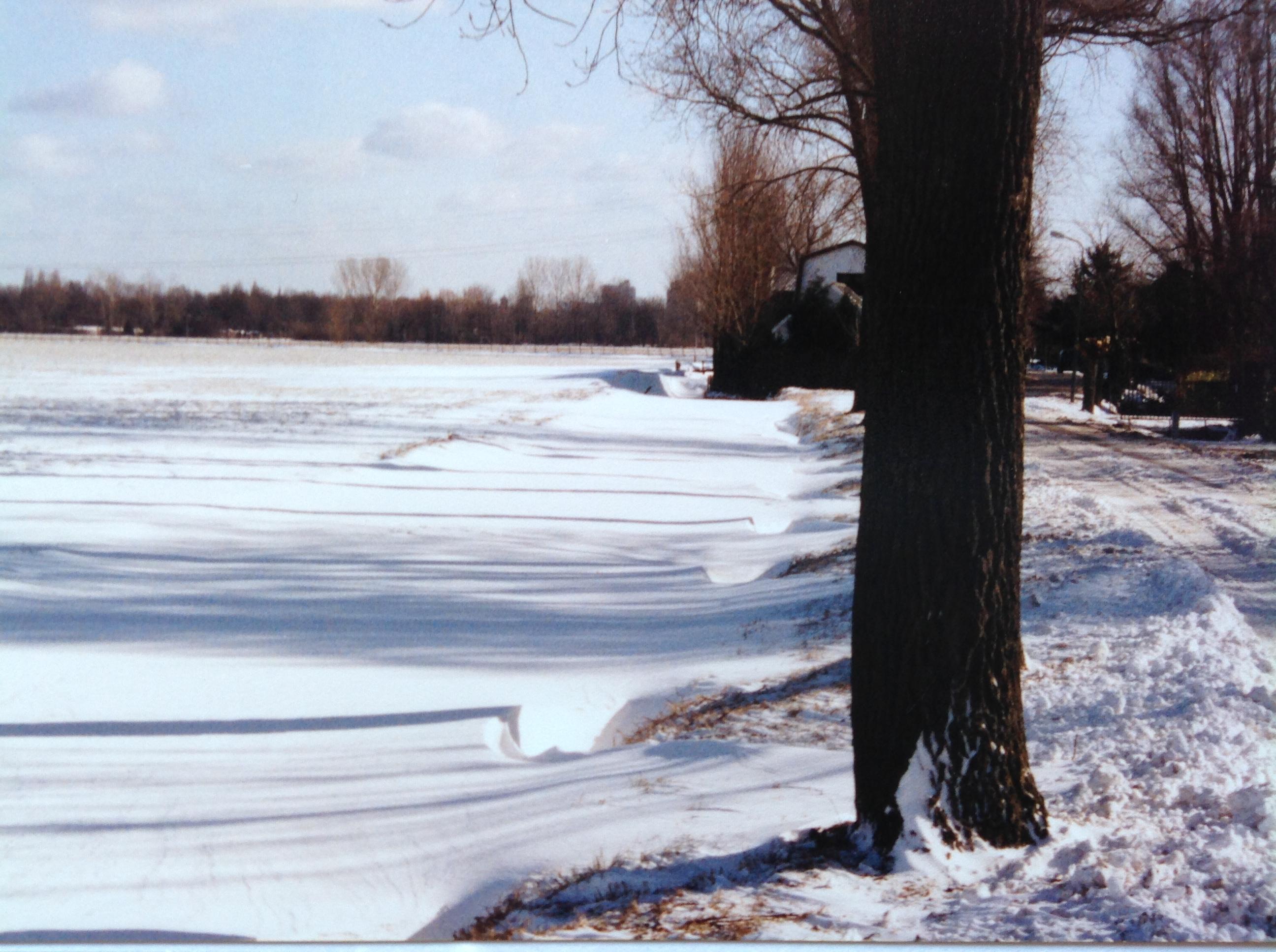 Winter 1990. Rechts is het toegangshek tot Groenedijk 35 zichtbaar